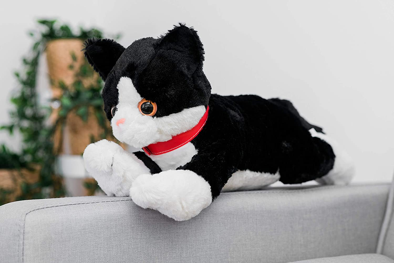 Teddy Cat Kitten Black Bengal Siamese Grumpy Cuddly Plush Soft Toy