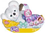 Little Live Pets Cozy DOZYS Koala
