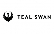 Avail 10% Off on your next purchase by signing up at Teal Swan